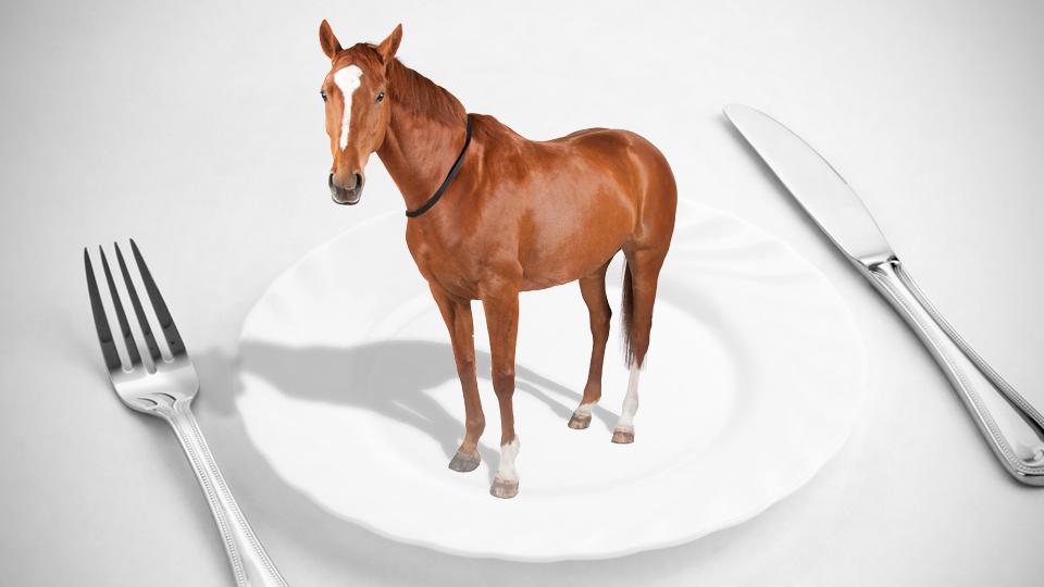 Carne de cavalo