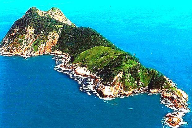 Snake-Island-Brazil