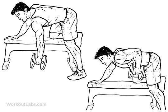 exercícios para costas melhores