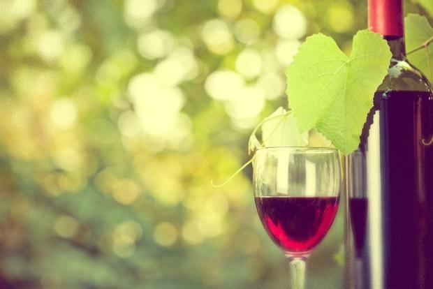 vinho-primavera