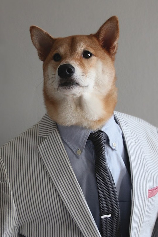 Menswear-Dog-04-GQ-23Apr15_b_540x810