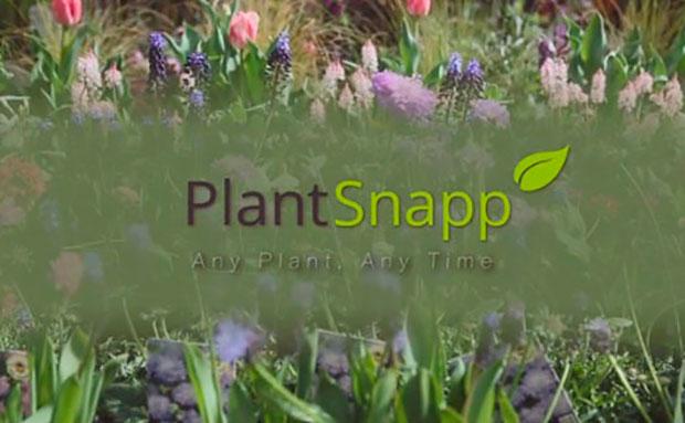 plant-snap-el-hombre