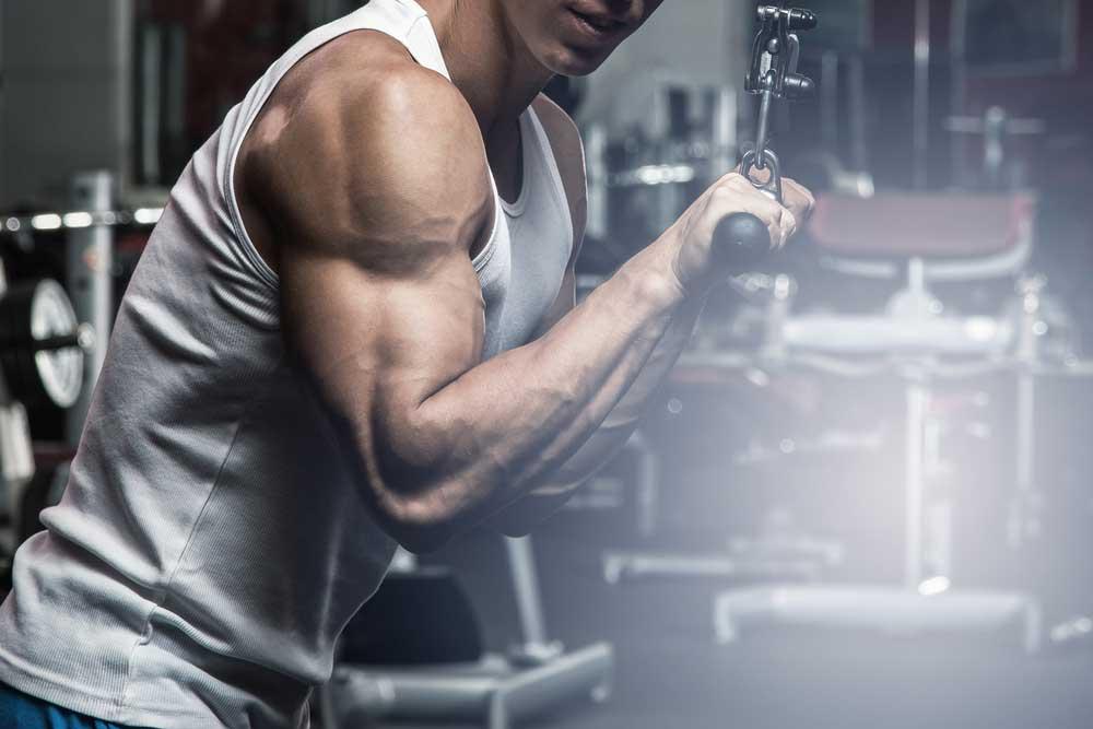 perder-gordura-ganhar-massa-muscular