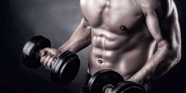 treino de bíceps melhores exercícios