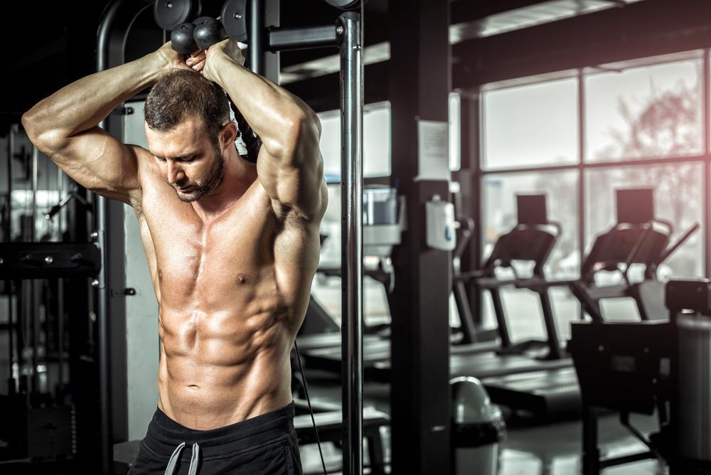 treino de tríceps melhores exercícios
