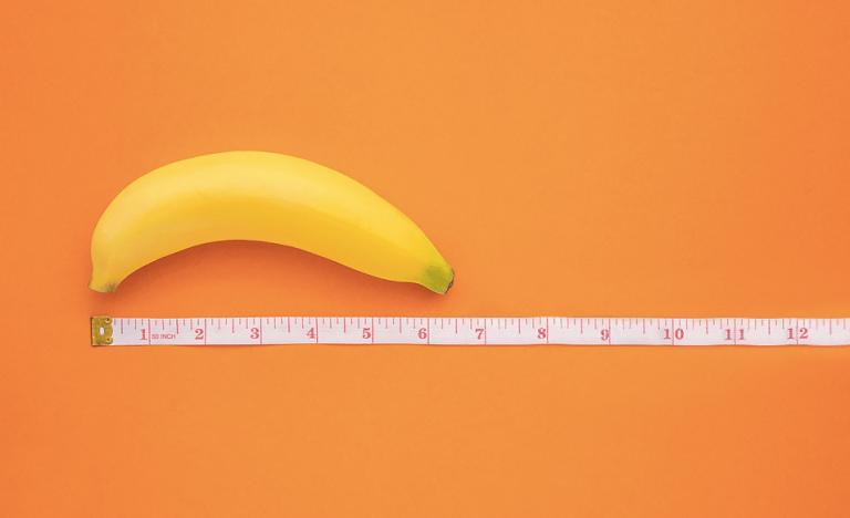 5 coisas importantes que você precisa saber sobre o pênis
